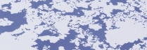 阪本トクロウ 「地図」 53×53cm アクリル/高知麻紙