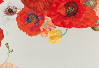 岩田壮平「Poppy」紙本彩色 12号