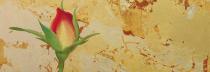 佐々木理恵子 「小さな庭-薔薇の蕾-」 日本画23.5×23.5