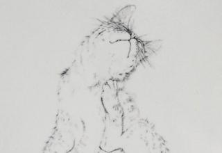 藤田嗣治 「猫」 墨 29.6×25.4