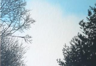 阪本トクロウ 「呼吸」 20×25 アクリル