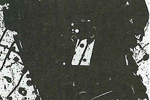 「Vorstellung」 1981 アクアチント