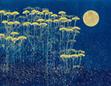 月下の草花