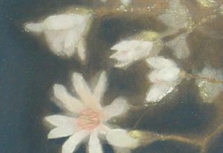 「新月(辛夷)」日本画 41×19.5㎝