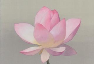 「咲きそめし」日本画 5号