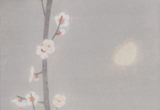 中西 和 「白梅」洗い出し 46×24cm