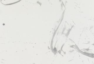 「滌あらう」墨・亀紋宣 138×68.5cm