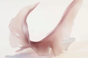小曽川瑠那 「ひとひらの記憶」 ガラス 9.5×14×7cm