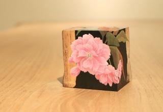 「掌の花-八重桜- 」日本画 7×8.7×D6.8cm