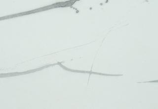 「律 やわらぎ」墨・亀紋宣  25.8×68.2cm