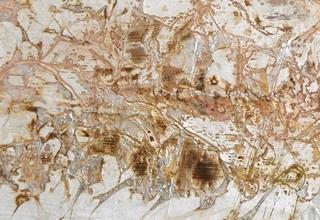 「淡墨冬華」岩絵具、銀箔、白亜、雁皮/杉 39×99.5.㎝