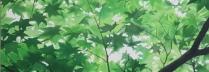佐々木理恵子「木漏れ日Ⅰ」岩絵具、水干/麻紙 S20号