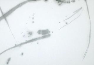 「律 やわらぎ」 墨・亀紋宣  27.6×46.5cm