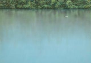 阪本トクロウ「水面」P30 号 65.3×91cm