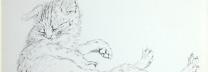 藤田嗣治 「猫」 鉛筆 23.5×28.5