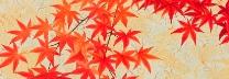 佐々木理恵子 「秋の色 Ⅰ」 日本画35×70㎝