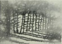 田中みぎわ「木もれびの道」 墨、胡粉/雲肌麻紙 9×12.7