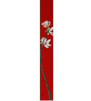 水野竜生「スイートピー」 アクリル26×3.5         額寸41.8×13.5   売約済
