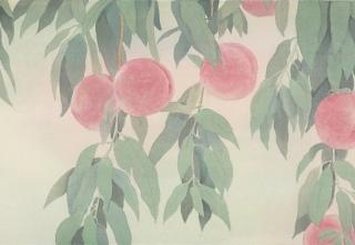 中西和 「果樹園にて」 洗い出し 30×54